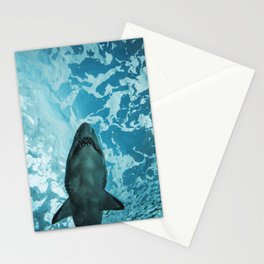 Shark Photography | Deep Sea | Ocean Art | Wildlife | Nature | Fish Stationery Cards