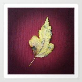 Leaf no. 2 Art Print