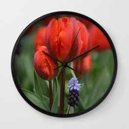 We Belong Together, Holland Tulips by Karen Images Wall Clock
