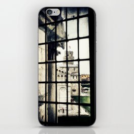 Pisa Cathedral iPhone Skin