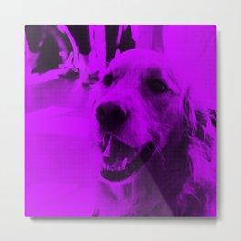 Rufus the Dog Metal Print