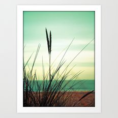 Dune View Art Print