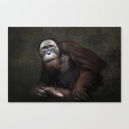 Give me a smile Canvas Print