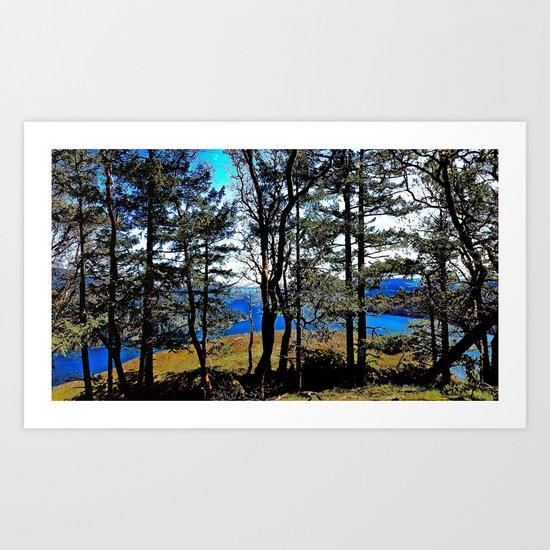 Trees, Daylight Stoney Hill Art Print