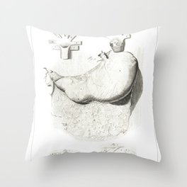 Human Anatomy Art Print STOMACH gastroenterologists Vintage Anatomy, doctor medical art, Antique Throw Pillow