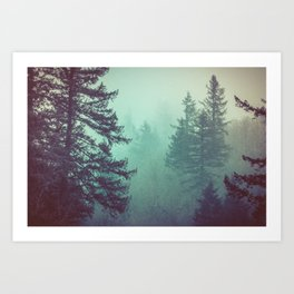 Forest Fog Fir Trees Art Print