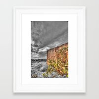 cacti Framed Art Prints featuring Cacti by Kent Moody