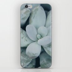 Moonstones iPhone & iPod Skin