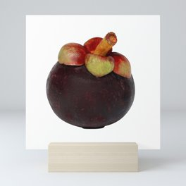 Mangosteen Thai fruit Mini Art Print
