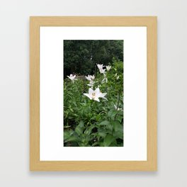 Japanese Lilies // Flower Field Bush In Park Framed Art Print