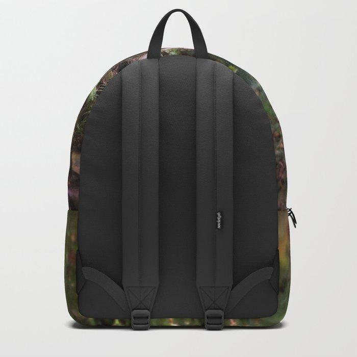 Old Wet Stone Steps Backpack