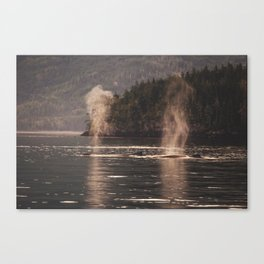 Giants I Canvas Print