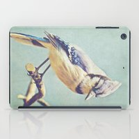 virginia iPad Cases featuring Virginia Bluejay by Beth Thompson
