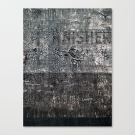 nisher Canvas Print