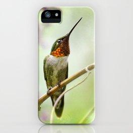 Hummingbird Passion iPhone Case