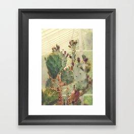 Desert Vibes Framed Art Print