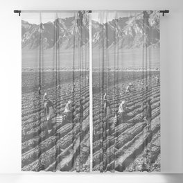 Farm workers and Mt. Williamson Sheer Curtain