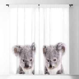 Baby Koala, Baby Animals Art Print By Synplus Blackout Curtain