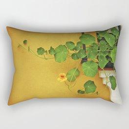Window Box Rectangular Pillow