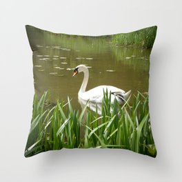 Serenity by Teresa Thompson Throw Pillow