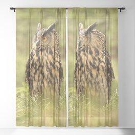 Eagle Owl Sheer Curtain