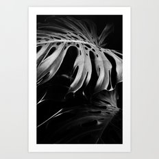 Nature monstera Art Print