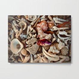 Warm Seashell Palette Metal Print