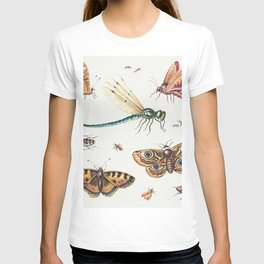 Insects, Butterflies, Dragonfly by Jan van Kessel T-shirt
