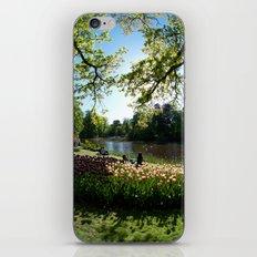 Keukenhof, Netherlands iPhone & iPod Skin