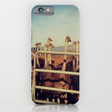 Ostrich Farm iPhone 6s Slim Case