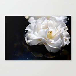 Float Canvas Print