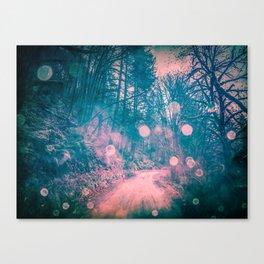 Pink Magical Path Canvas Print