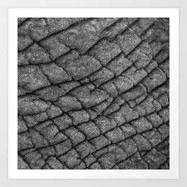 Cracked Skin Art Print