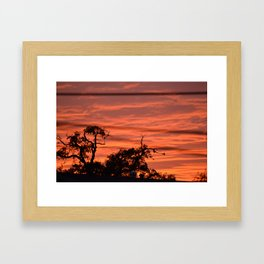 Orange Nikon Framed Art Print