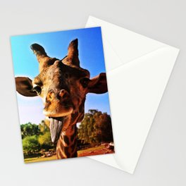 :P Stationery Cards