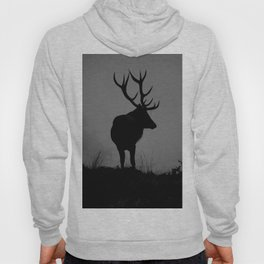 Wildlife, Monarch Of The Park Hoody