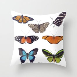 Butterfly collection isolated on White background Throw Pillow