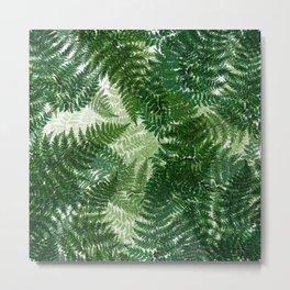 green big leaves Metal Print