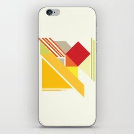 form  iPhone Skin