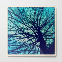 Branches reaching out Metal Print