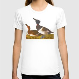 Ring-necked Duck T-shirt
