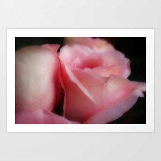 Soft Roses Art Print