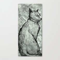 Wise Old Cat Canvas Print