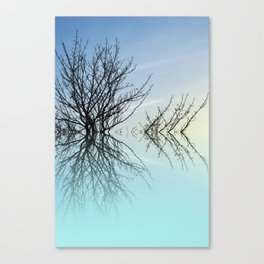 Twiglets Canvas Print