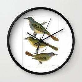 Antique color print three birds Wall Art Wall Clock