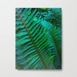 Flowing Ferns Metal Print