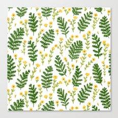 Ferns & Flowers Canvas Print