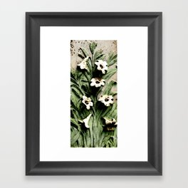 Calla Lilies in Color Framed Art Print
