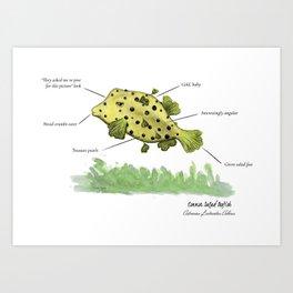 Common Salad Boxfish Art Print