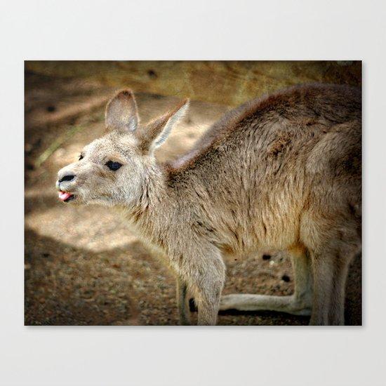 Razzie Kangaroo Canvas Print